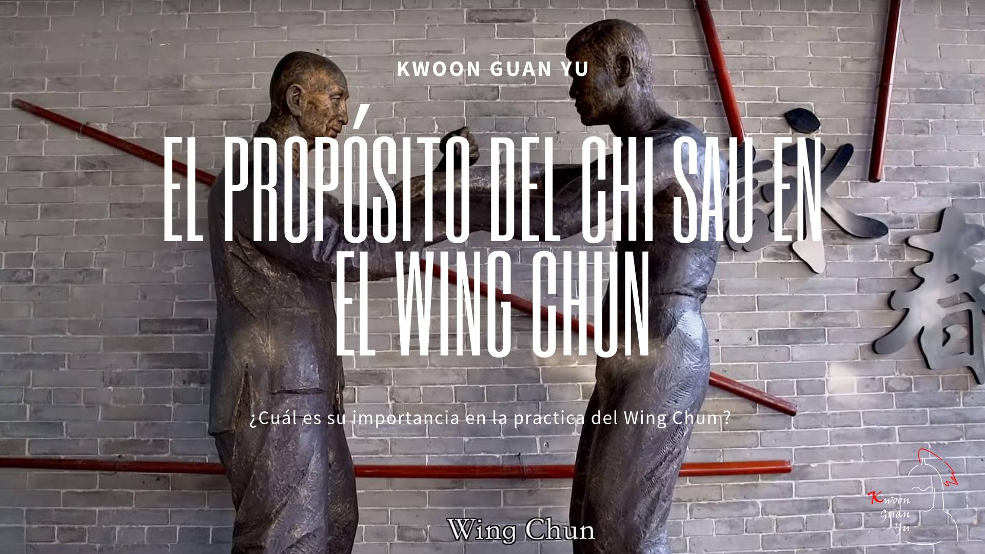 El Propósito del Chi Sau en el Wing Chun
